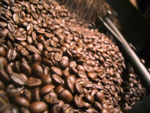 El café II: tipos y diversidad 1