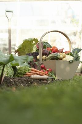 Fertilizantes buenos para las Hortalizas