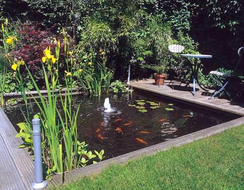 Matar las malas hierbas en estanques de agua salada iorigen for Estanque de agua