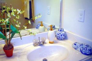 Orquideas en el baño