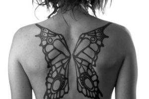 mariposa alas