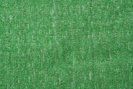 falsa hierba para el jard n iorigen