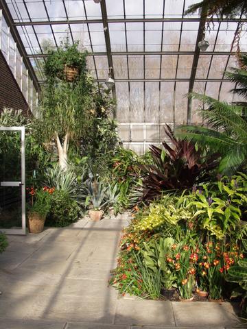 Plantas en vestíbulos y pasillos 1