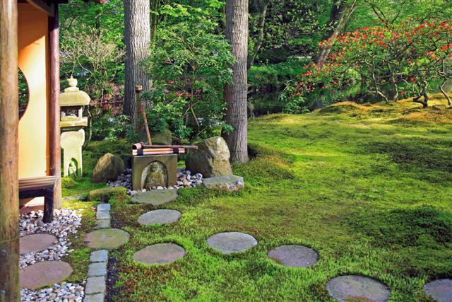 Las plantas sakuteiki 2 iorigen for Plantas jardin japones