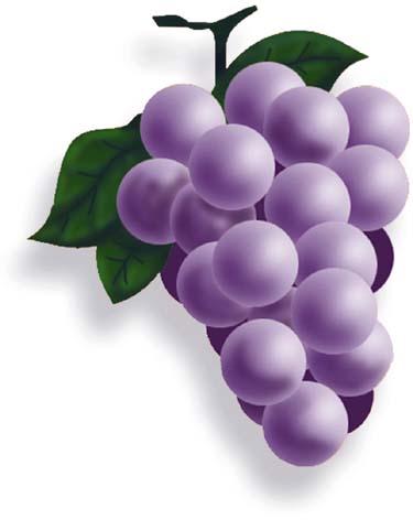 diseño de uvas