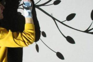 Pintar un mural en una pared 11