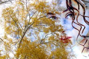 depresión de otoño