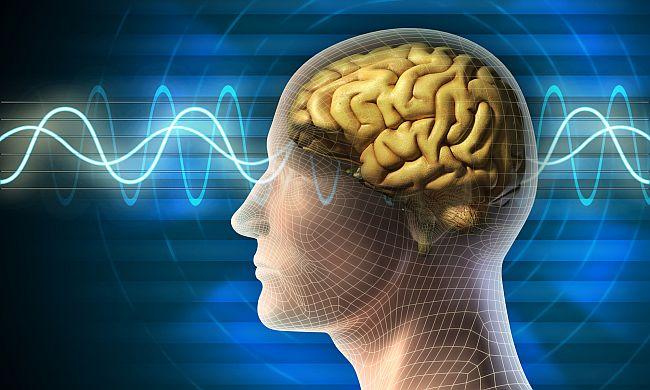 ejercicios para la mente