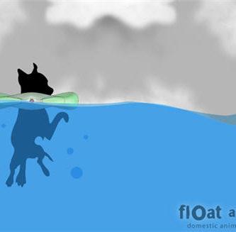 float a pet