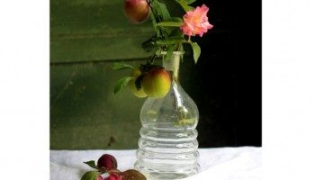 Aprender a decorar tu casa con flores y frutas 5