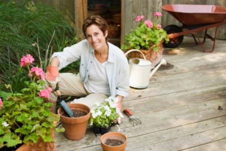 Excelentes beneficios de tener plantas en casa 1