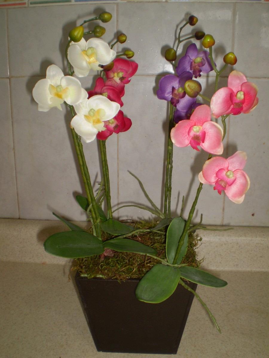 Cómo escoger macetas para orquídeas