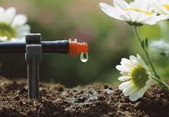 Cómo drenar el suelo de manera óptima