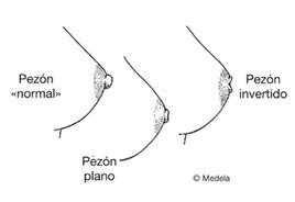 pezones-normal-plano-invertido