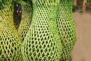 bambu forma jarron