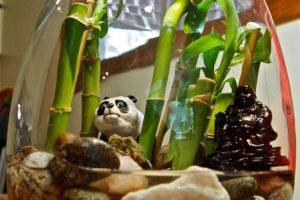 bambu jarron cristal oso panda