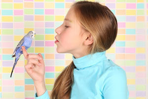 niños y aves