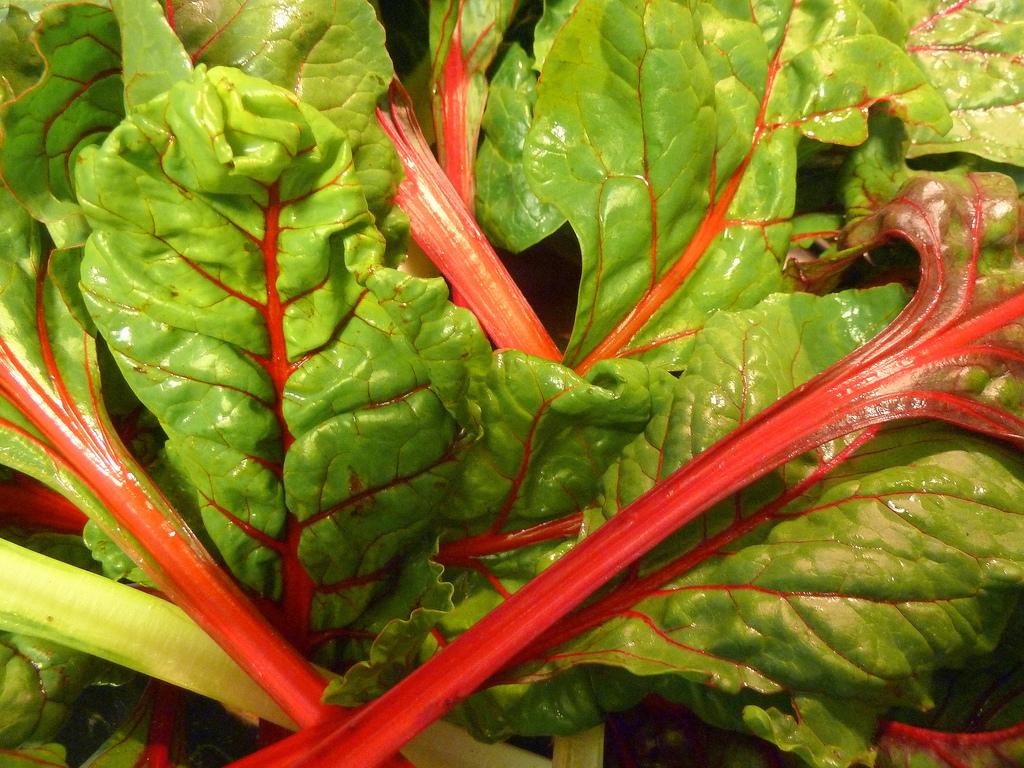 Dieta depurativa de un día con verduras
