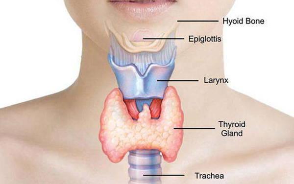 problemas de la tiroides