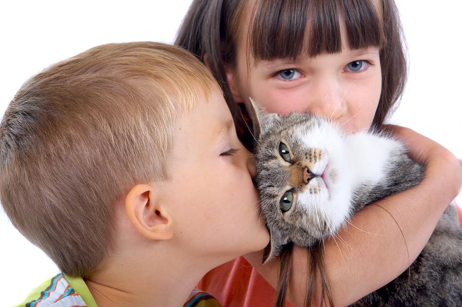 niños con un gato