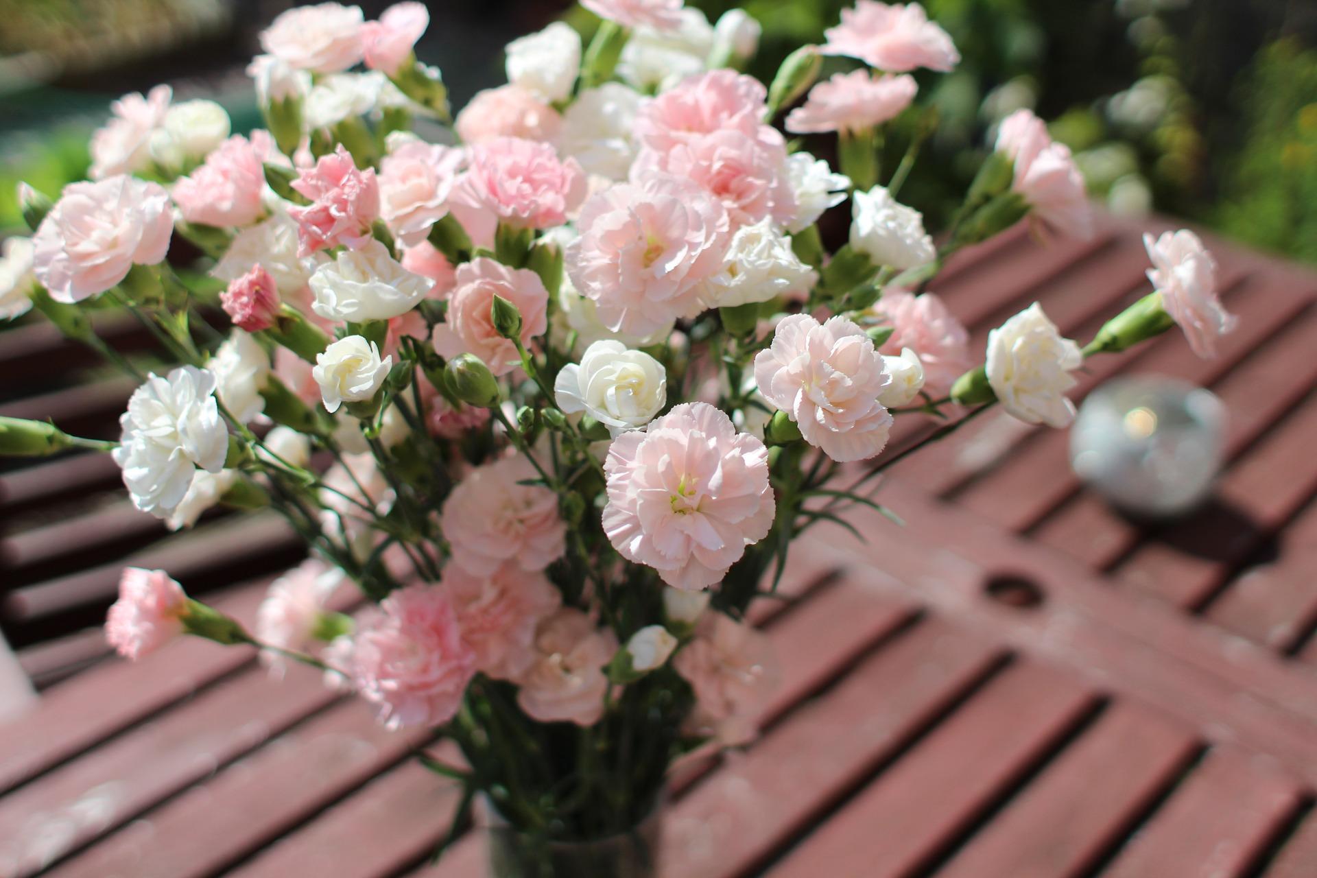 claveles blancos rosas
