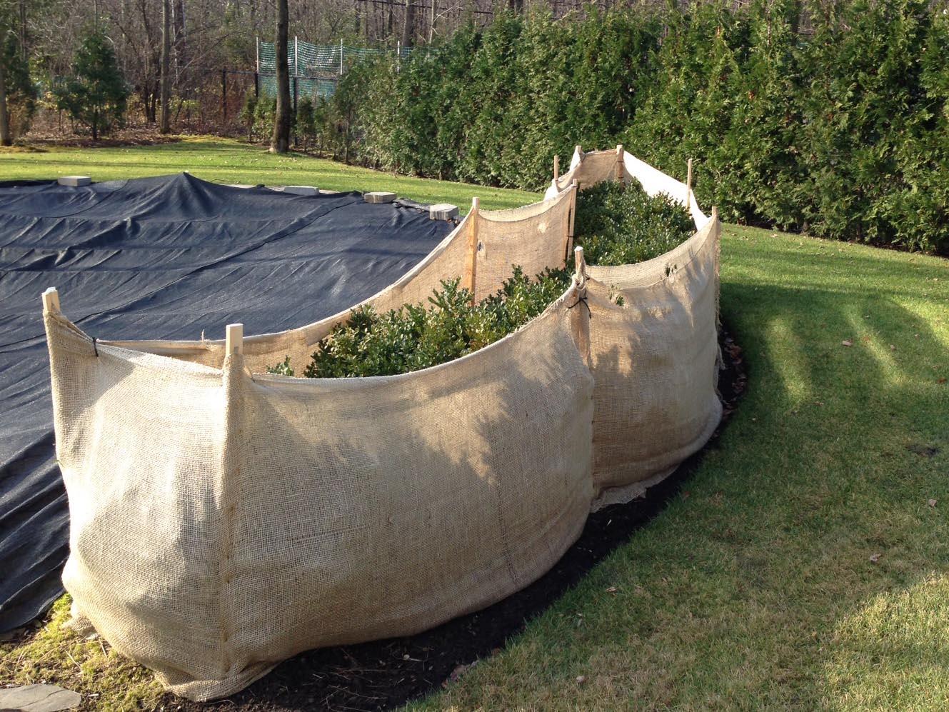 proteger las plantas del jardín en invierno