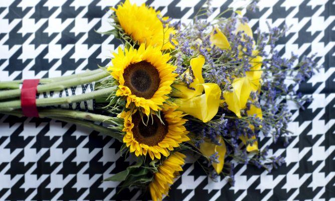 girasol ramo flores